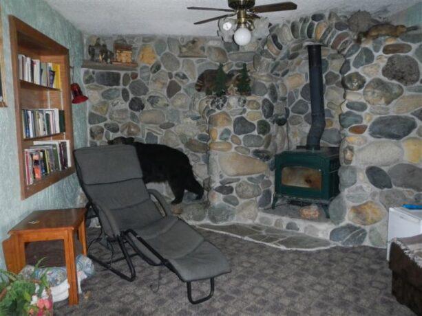 Photo Gallery, Whitebird Summit Lodge